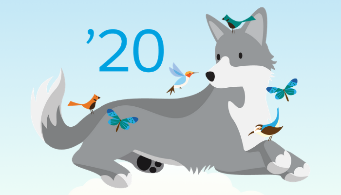 Salesforce Spring 20 Release Notes